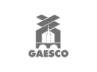 GAESCO NEMESIS